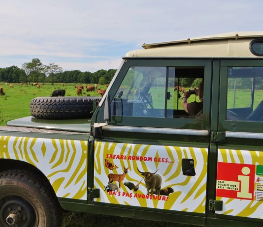 Safari Gees Drenthe