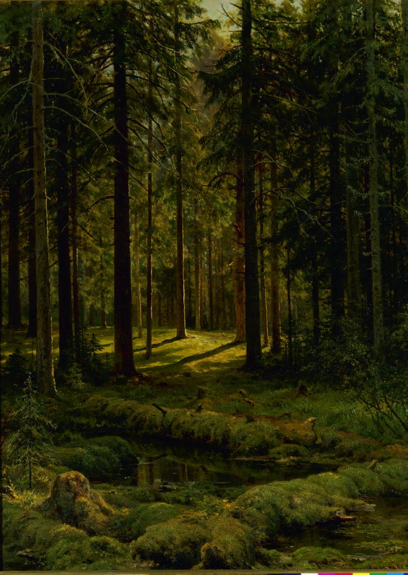 ivan-shishkin-naaldbos-zonnige-dag-1895-staats-russisch-museum-st-petersburg