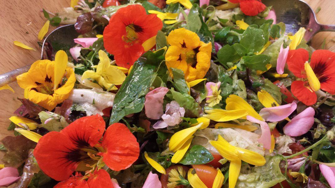 Eetbare wilde bloemen